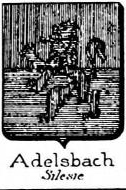 Adelsbach Coat of Arms / Family Crest 1