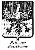 Adler Coat of Arms / Family Crest 6