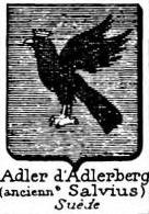 Adler Coat of Arms / Family Crest 8