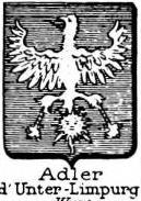 Adler Coat of Arms / Family Crest 11