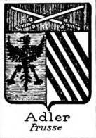 Adler Coat of Arms / Family Crest 5