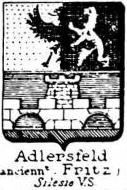 Adlersfeld Coat of Arms / Family Crest 2