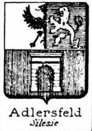 Adlersfeld Coat of Arms / Family Crest 0