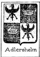 Adlershelm Coat of Arms / Family Crest 0
