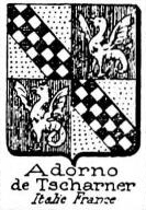 Adorno Coat of Arms / Family Crest 3