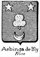 Aebinga Coat of Arms / Family Crest 1