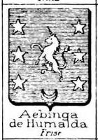 Aebinga Coat of Arms / Family Crest 2