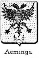 Aeminga Coat of Arms / Family Crest 1