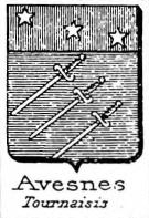 Avesnes Coat of Arms / Family Crest 3