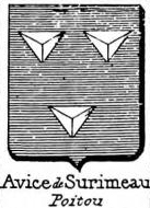 Avice Coat of Arms / Family Crest 3