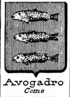 Avogadro Coat of Arms / Family Crest 13