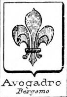 Avogadro Coat of Arms / Family Crest 11