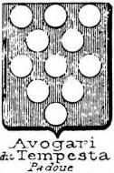 Avogari Coat of Arms / Family Crest 2