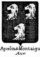 Aycelin Coat of Arms / Family Crest 1