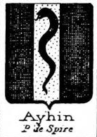 Ayhin Coat of Arms / Family Crest 0