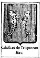 Cabilliau Coat of Arms / Family Crest 1