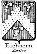 Eichhorn Coat of Arms / Family Crest 2