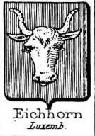 Eichhorn Coat of Arms / Family Crest 1