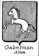 Gabelman Coat of Arms / Family Crest 0