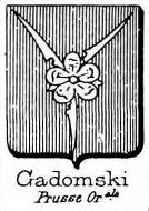 Gadomski Coat of Arms / Family Crest 1