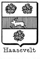 Haasevelt Coat of Arms / Family Crest 0