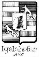 Igelshofer Coat of Arms / Family Crest 0