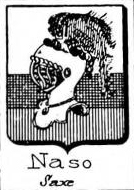 Naso Coat of Arms / Family Crest 3