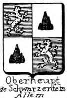 Oberheupt Coat of Arms / Family Crest 0