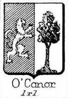OConor