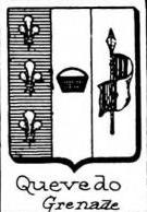 Quevedo Coat of Arms / Family Crest 1