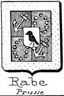 Rabe Coat of Arms / Family Crest 10