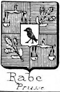 Rabe Coat of Arms / Family Crest 11