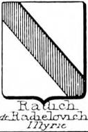 Radich Coat of Arms / Family Crest 3