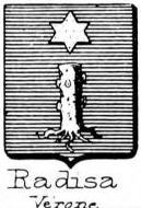 Radisa Coat of Arms / Family Crest 0