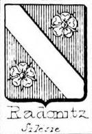 Radonitz Coat of Arms / Family Crest 1
