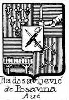 Radosavljevic Coat of Arms / Family Crest 0