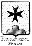 Radowitz Coat of Arms / Family Crest 0