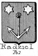 Radzic Coat of Arms / Family Crest 0