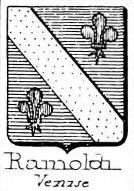 Rainoldi Coat of Arms / Family Crest 0
