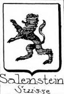 Salenstein