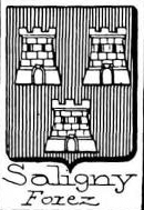 Saligny Coat of Arms / Family Crest 0