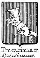 Trainer Coat of Arms / Family Crest 2