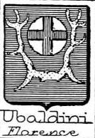 Ubaldini Coat of Arms / Family Crest 3
