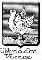 Ubbriachi Coat of Arms / Family Crest 0