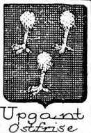 Upgant Coat of Arms / Family Crest 0
