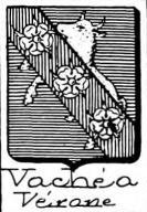 Vachea