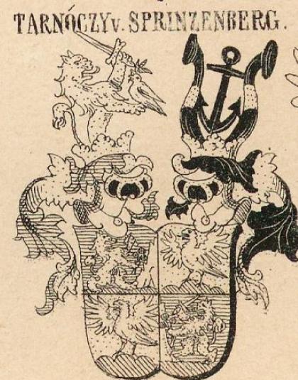 Tarnoczy Coat of Arms / Family Crest 8