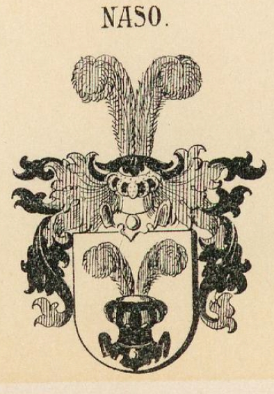Naso Coat of Arms / Family Crest 2