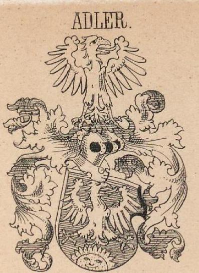 Adler Coat of Arms / Family Crest 3