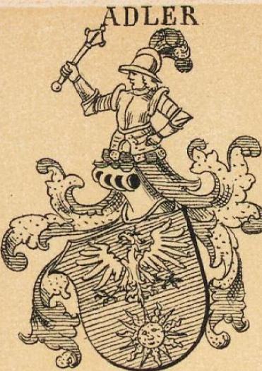 Adler Coat of Arms / Family Crest 4